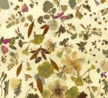 Victoriana -Autumn Sticker