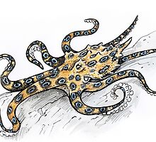 Blue Ring Octopus by SnakeArtist