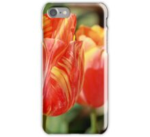 Tulips - Four iPhone Case/Skin