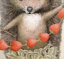 Animal Hedgehog Strawberry Sticker