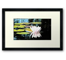 Floral Reflections Framed Print