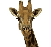 Allen the Giraffe  Photographic Print