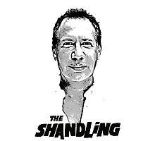 shandling Photographic Print