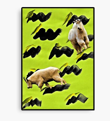 Two Goats Canvas Print