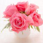 pink roses by Masako Ogasawara