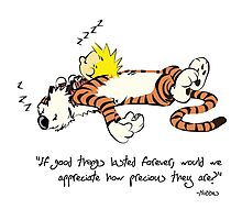 Calvin And Hobbes Quote Photographic Print