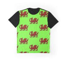 Might of the Dragon Graphic T-Shirt