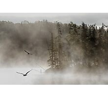 Morning on Costello Creek in Algonquin Park Photographic Print