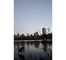 the Nature of Vancouver Photographic Print