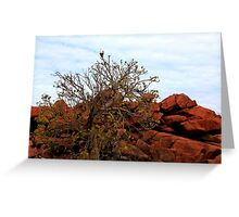 Withnell Bay - Dampier, Western Australia Greeting Card