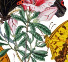 FF - Butterfly-3 Sticker