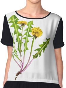 Dandelion flower. Chiffon Top