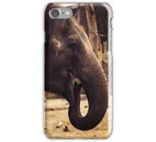 elephant, asia elephant iPhone Case/Skin