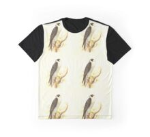 Historical bird painting Graphic T-Shirt