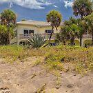 The House at Blind Pass Beach  by John  Kapusta