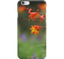 Montbretia, Orange Wild Flowers iPhone Case/Skin