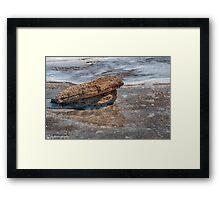 Coquina Rock  Framed Print