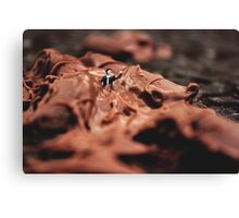 Miniature World #1 Canvas Print