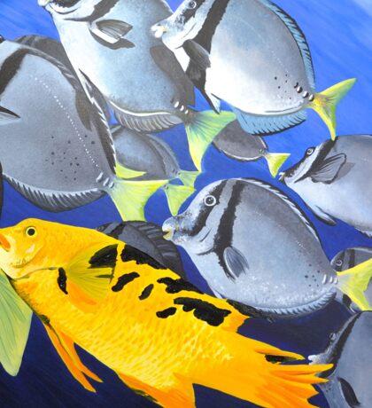Galapagos Tropical Fish Sticker