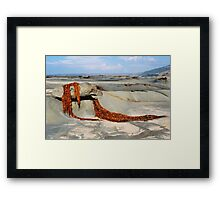 Seaweed Drape - Great Ocean Road Framed Print