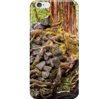 Rocky Roots in the Rain Forest iPhone Case/Skin