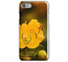 Natures colours 001 iPhone Case/Skin