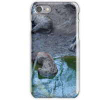 Let sleeping dogs... iPhone Case/Skin