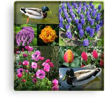 Flowers and Feathers - Keukenhof Collage Canvas Print