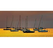 Floating on a golden base - Geelong Photographic Print