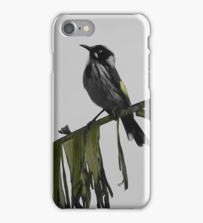 Newholland honeyeater iPhone Case/Skin