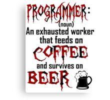 Programmer. Canvas Print
