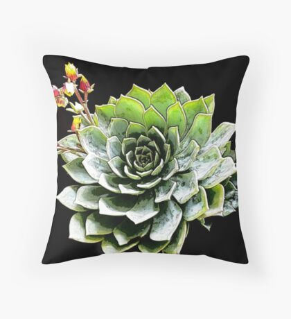 Echeveria glauca Throw Pillow