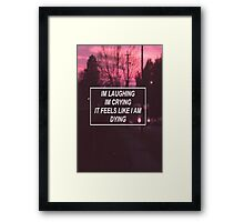 pity party lyrics  Framed Print