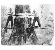 Woodcutters c1920 Poster
