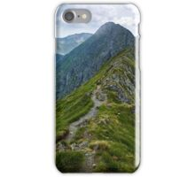 Mountaineous summer landscape iPhone Case/Skin