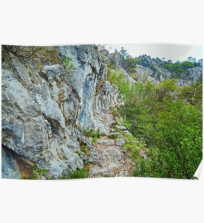 Rocky trail on mountains Poster
