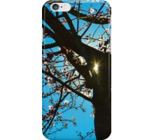 Glimmer of Spring iPhone Case/Skin
