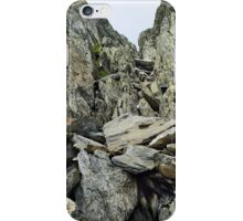 Rocky mountain trail iPhone Case/Skin