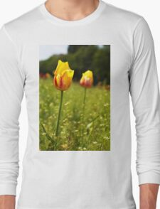 yellow and pink tulips Long Sleeve T-Shirt