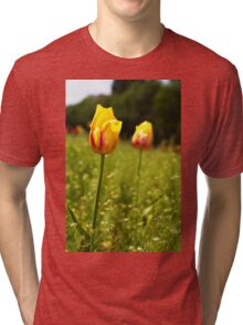yellow and pink tulips Tri-blend T-Shirt