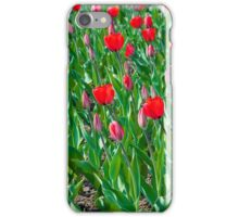 bright red tulips iPhone Case/Skin
