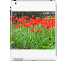bright red tulips iPad Case/Skin