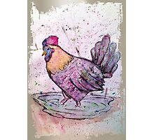 Colourful Hen Photographic Print