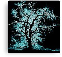 Black Tree Blue Canvas Print