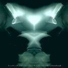 Alien X-ray by Rob Bryant