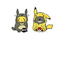 totoro and pikachu Photographic Print