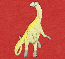 Shunosaurus In Color Tri-blend T-Shirt