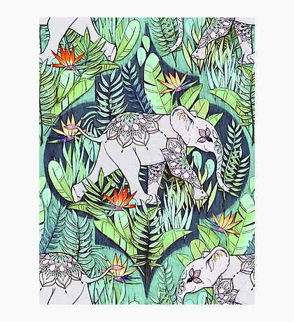 Little Elephant on a Jungle Adventure – faded vintage version Photographic Print