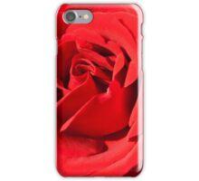 burgundy rose in the garden iPhone Case/Skin