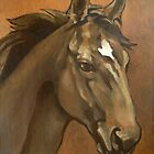 Sound Reason (Can) - Thoroughbred Stallion by Patricia Howitt